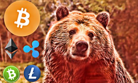 6 Ways To Protect Your Cryptocurrency In A Bear Market